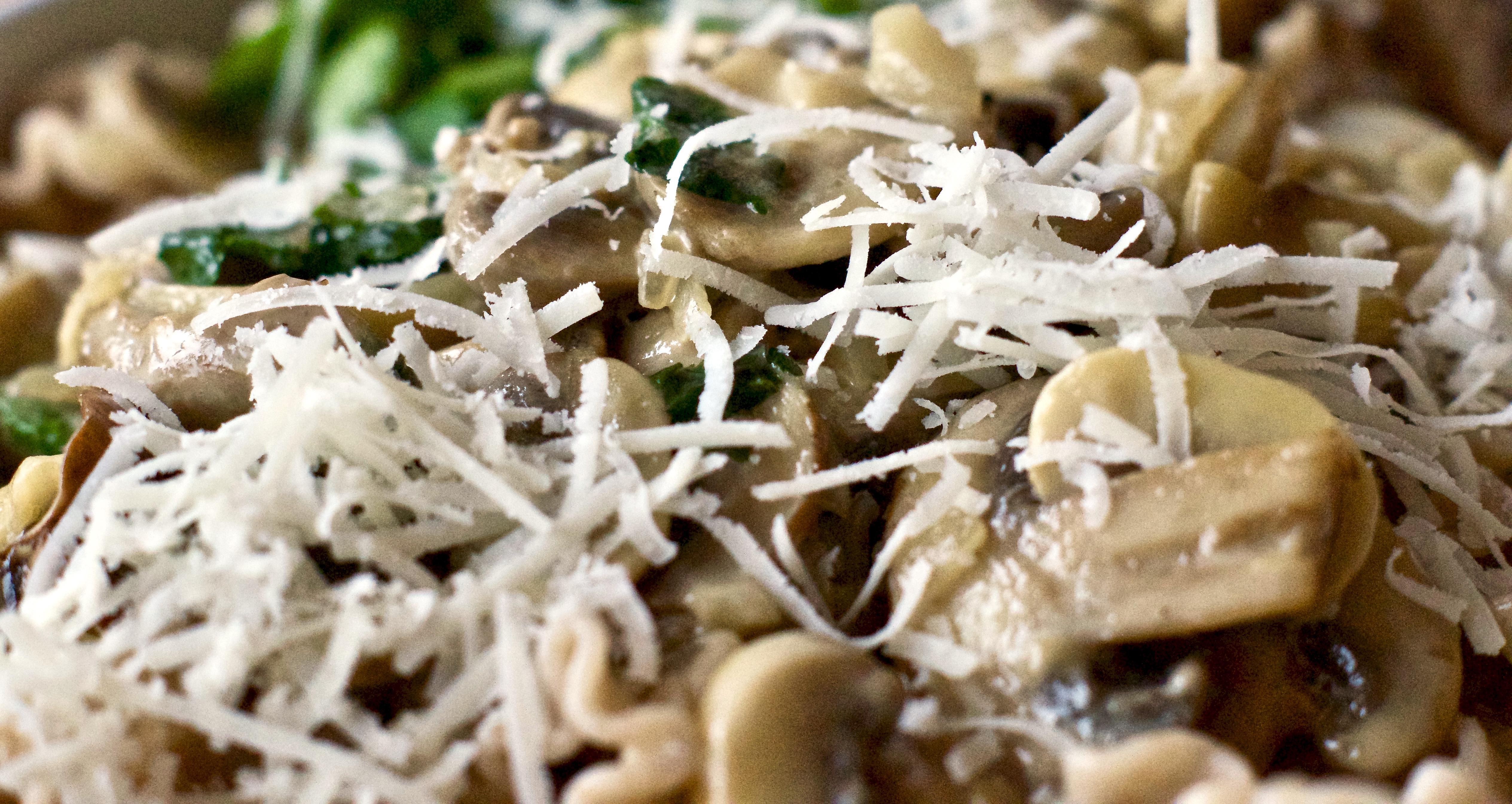Pasta mit Pilzrahmsauce – cremig, herzhaft, blitzschnell